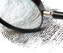 forensic-accounting-investigations